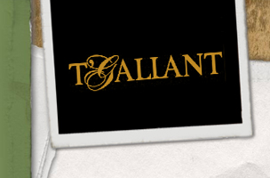 Agency - Web Development - T'Gallant
