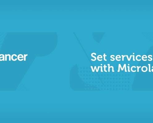 Microlancer services